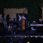 Obraz do wpisu: Koncert jazzowy - Ladies in the Night  #5